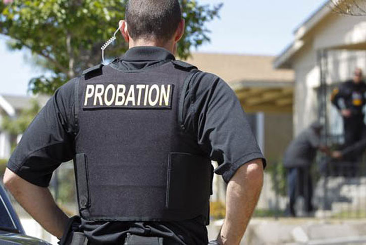 Probation and parole history goals and