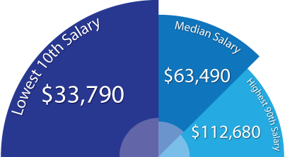 National Mean Salary for a Web Developer