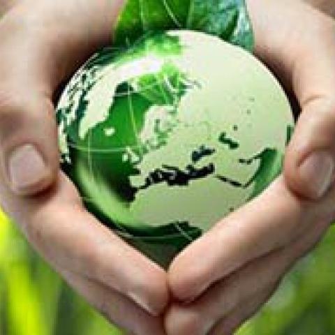 Green innovations and Eco Business